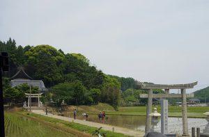 海士町田植え風景20170523