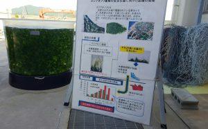 農林水産総合技術支援センター水産研究課20170509